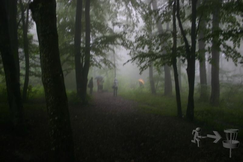 015-rdf-so-2010