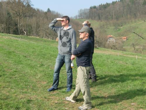 hesselbach-03-11-154